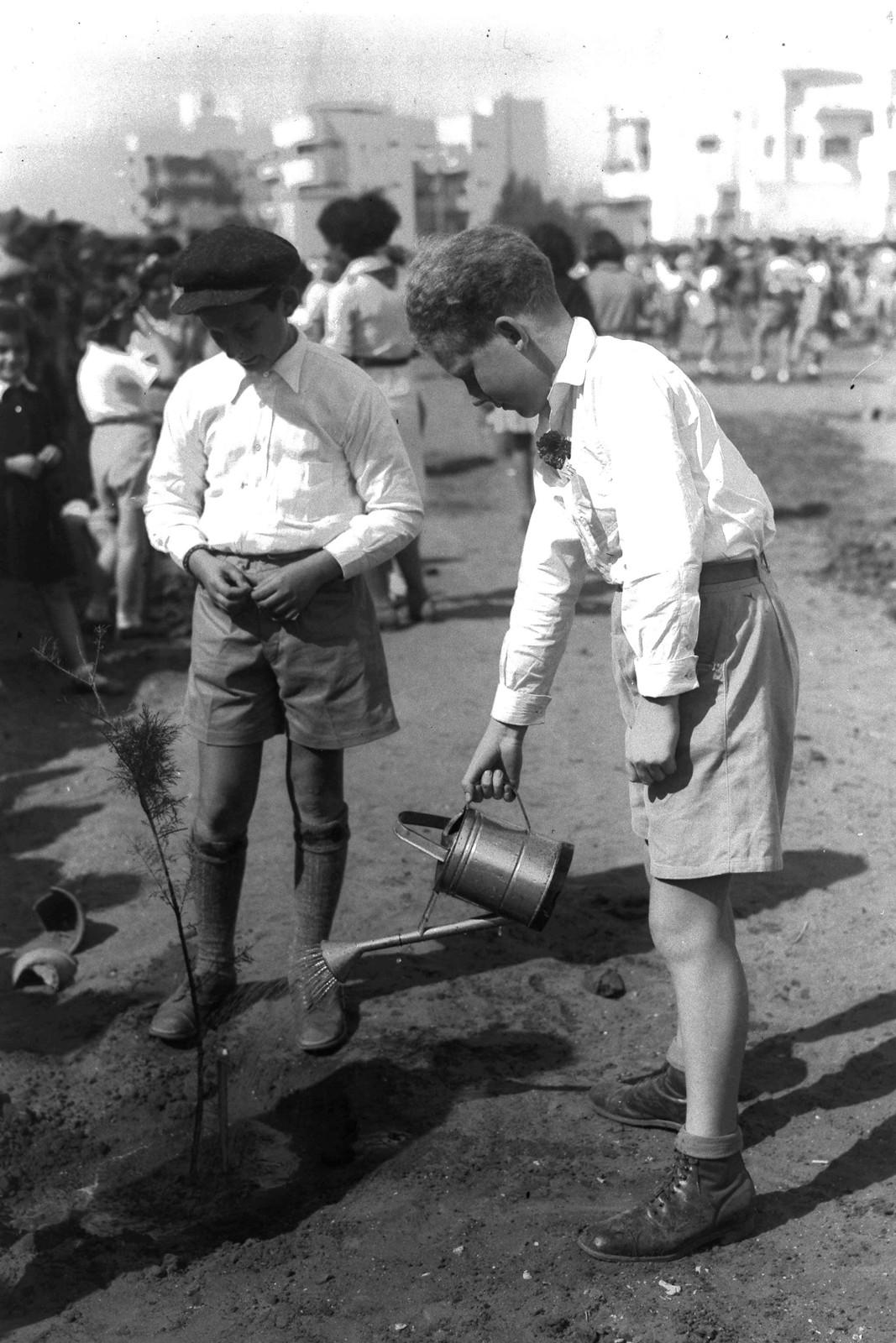 09. 1936. Ту би-Шват в Тель-Авиве
