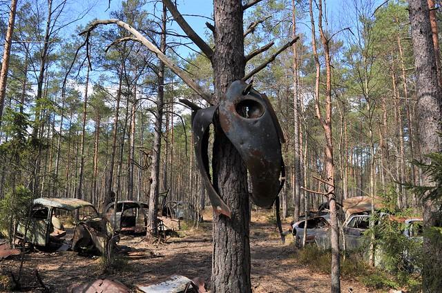 Ryd. Kyrkö Automotive graveyard in Småland, Sweden