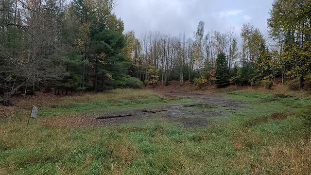 dried-up_pond
