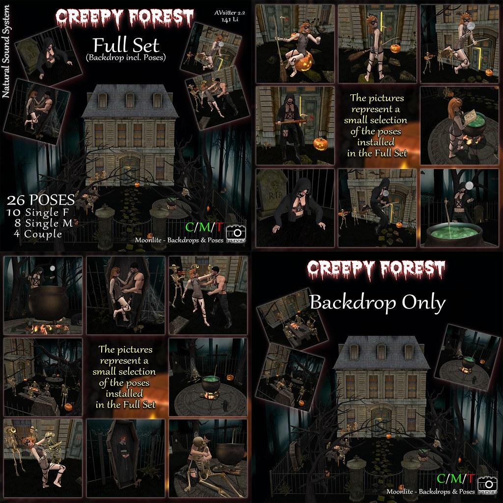 M-BdP :: Creepy Forest Backdrop – Exclusive for FOCUS Fair