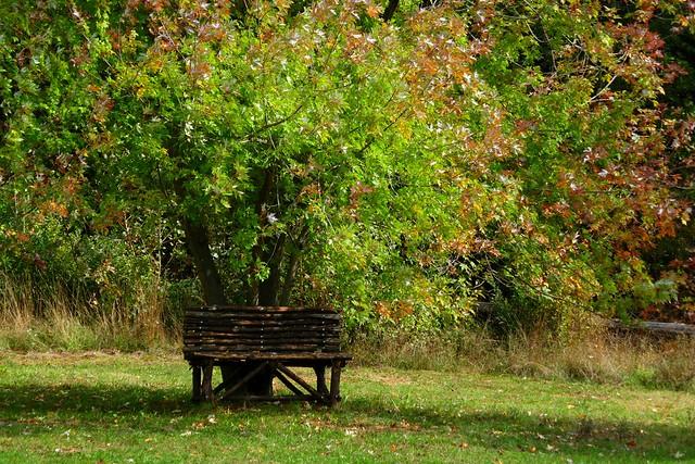 Autumnal HBM !