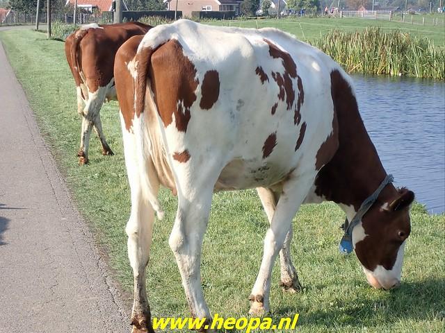 2021-10-09        Zevenhoven         25 Km (158)