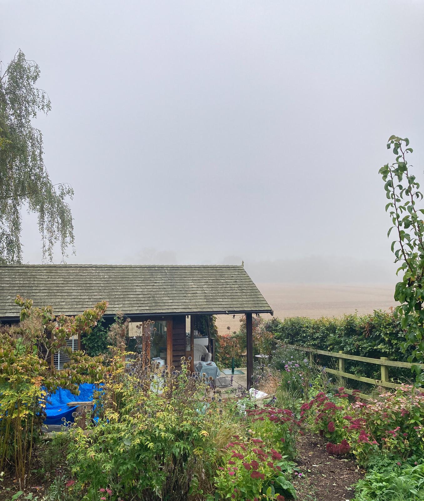 A bit foggy
