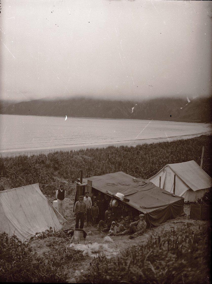 1909. Лагерь экспедиции и алеутский лагерь в бухте. Атту остров.