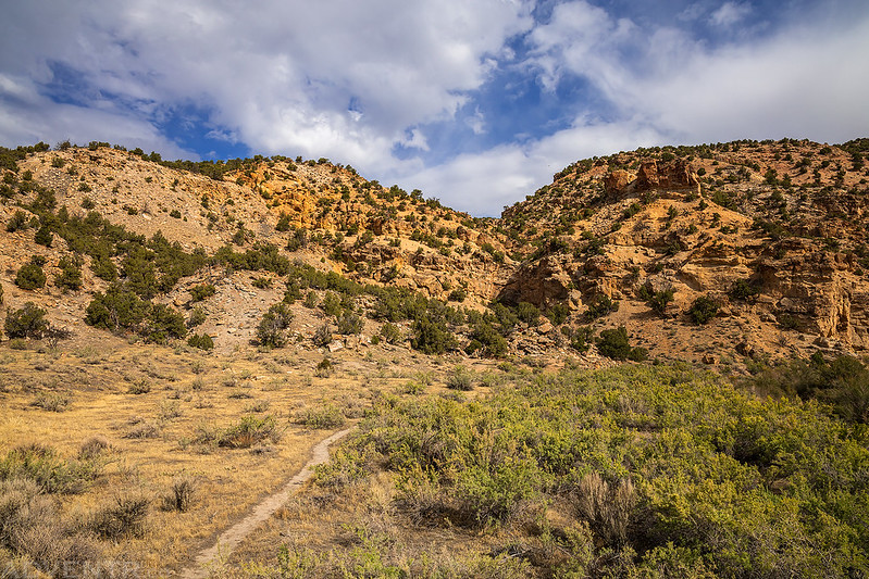 Trail Into The Canyon