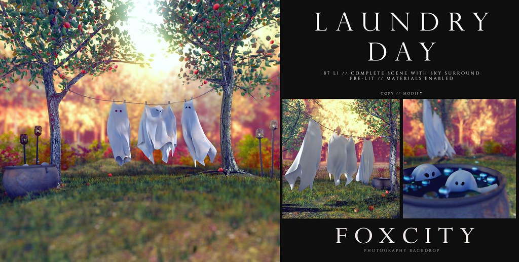 FOXCITY. Photo Booth – Laundry Day