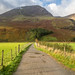 Path at the head of Buttermere