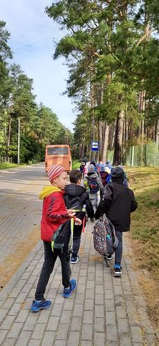 Wizyta w lesie