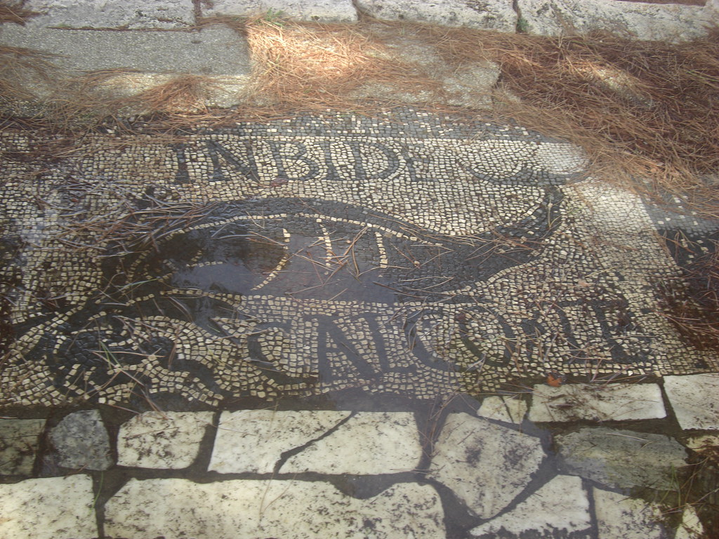 Mosaic of a Dolphin