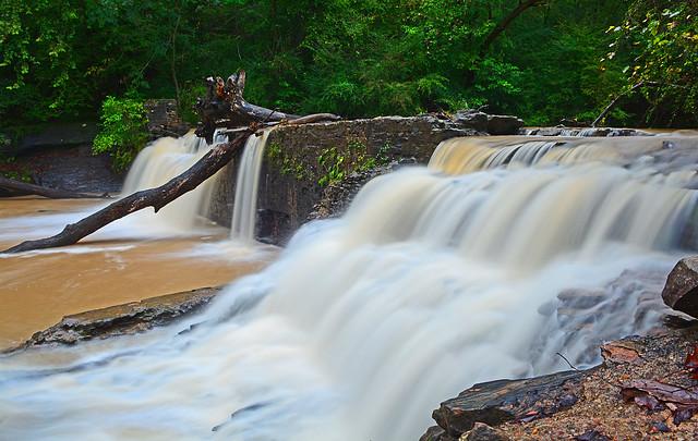 Alcovy River at Freeman's Mill Dam