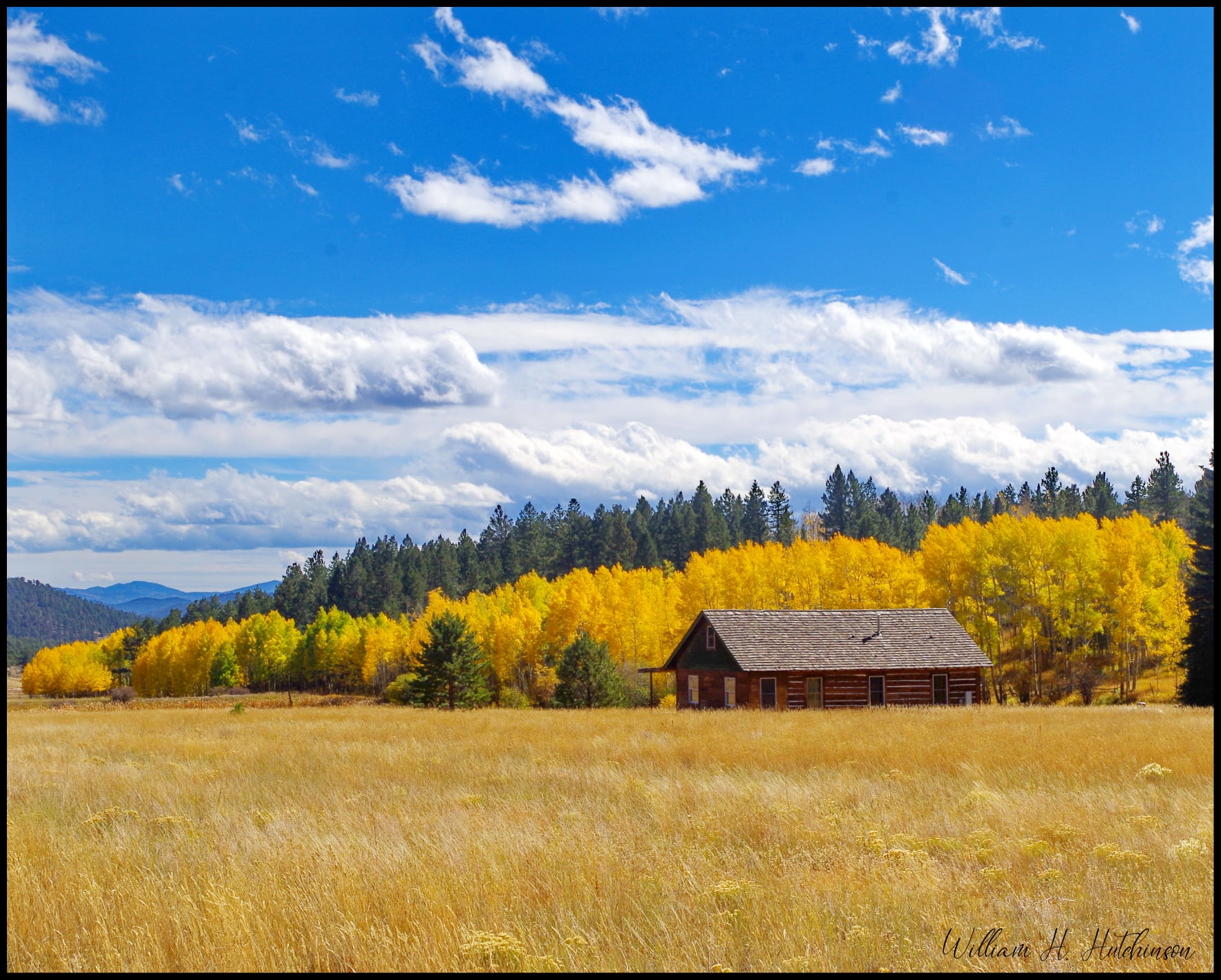 An old homestead among fall colors in Park County. (Bill Hutchinson)