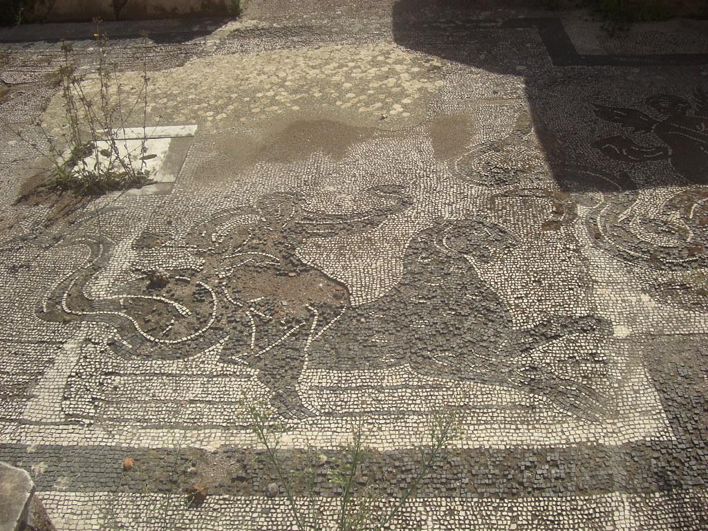 Mosaic of a Nereid