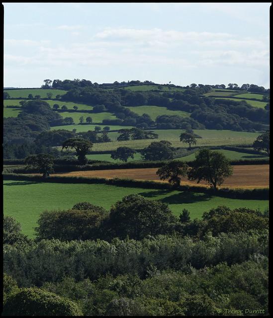 Portrait of the Landscape: Patchwork Quilt DSC08767