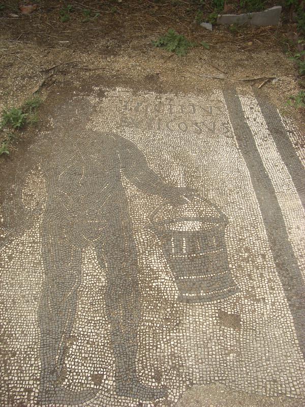 Mosaic of Buticosus