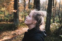 Listening to the creaking trees.  (由  PeeterTomson