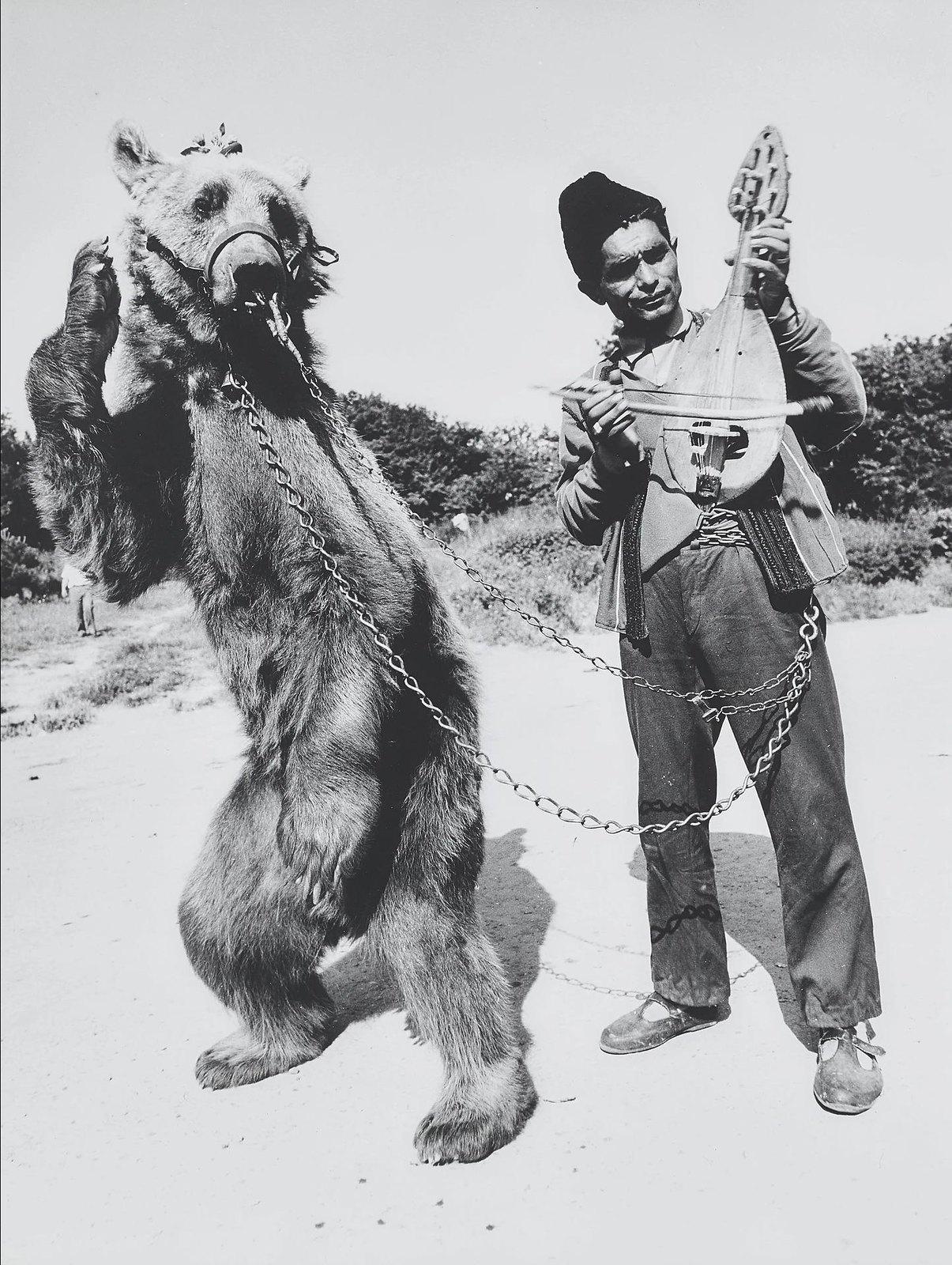 1972. Встреча с Болгарией. Цыган с танцующим медведем