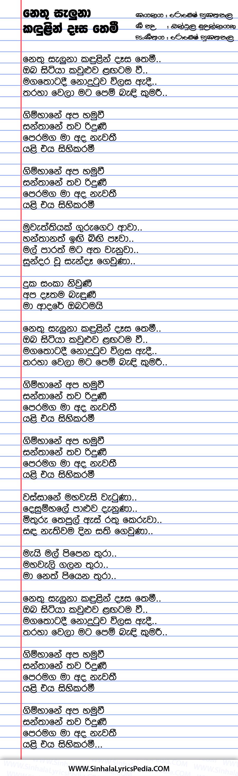 Nethu Saluna Kadulin Dasa Themi Song Lyrics