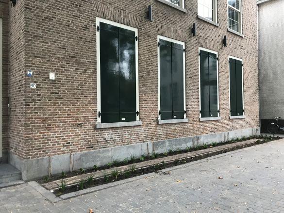 IMG_6410BredaCingelstraat