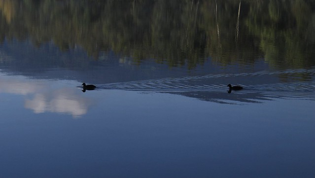 Lac des Ilettes