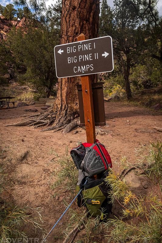 Big Pine Camps