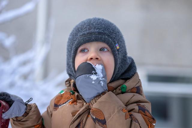 My grandson Nói testing the quality of the snow