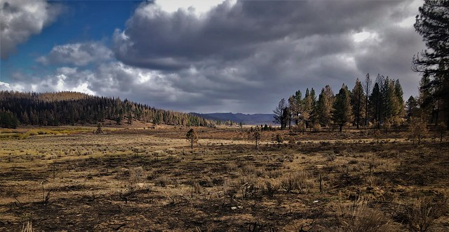 Aftermath of The Dixie Fire......   Explore Oct 13