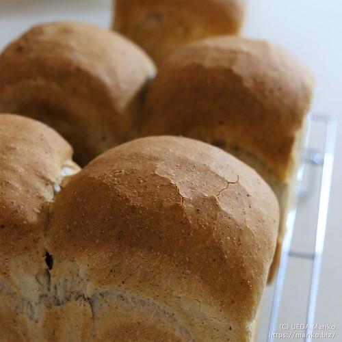 ライ麦食パン 20211012-DSCT5870 (2)