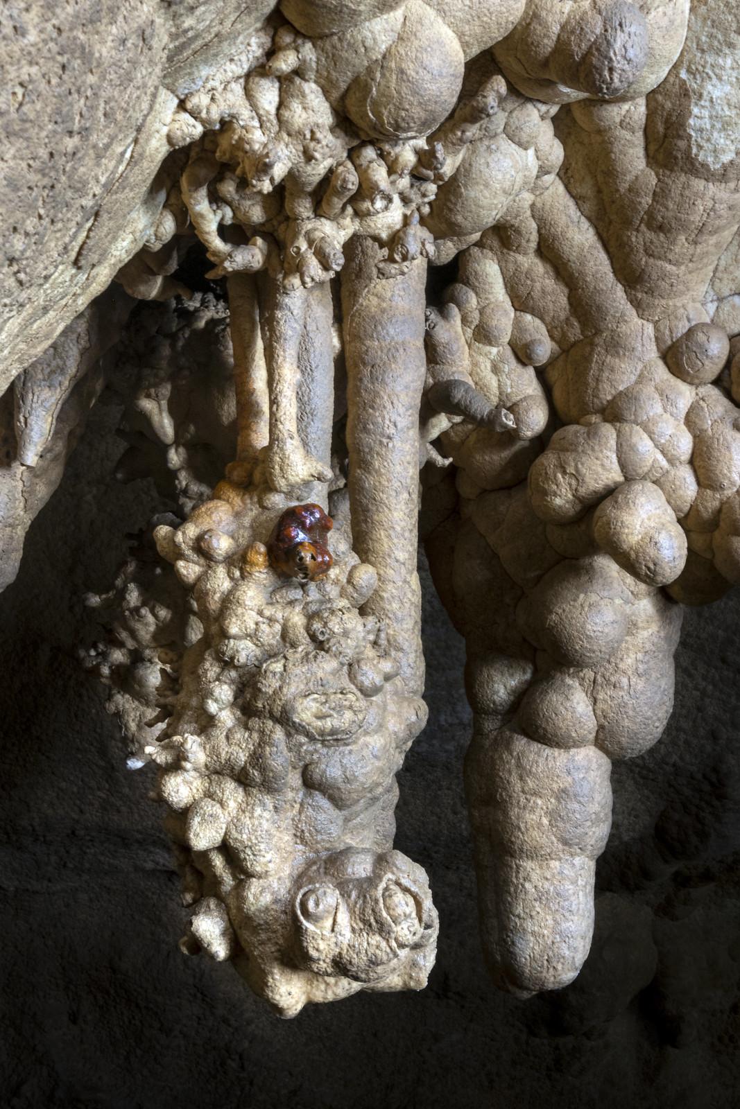 Helictites, Fern Cave, Jackson County, Alabama 5