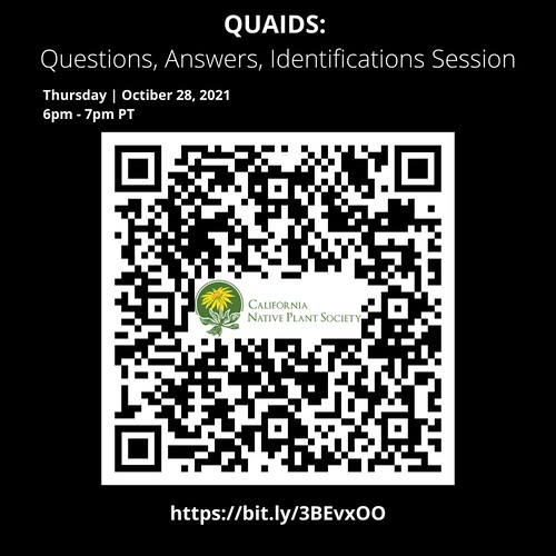QUAIDS: Questions, Answers, Identifications Session