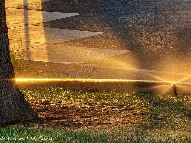 Sunrise spray (in Explore)