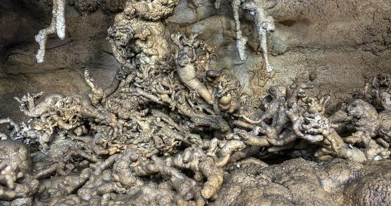 Helictites, Fern Cave, Jackson County, Alabama 8