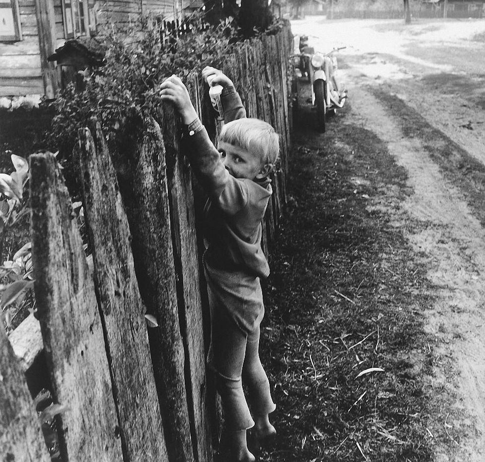 1971. Мальчик на заборе. Дзукия