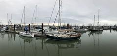 Fisherman's wharf at Steveston