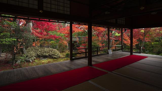 Momiji Re-visited (5) - Beyond the Engawa