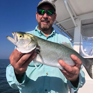 Photo of man on a boat holding a bluefish
