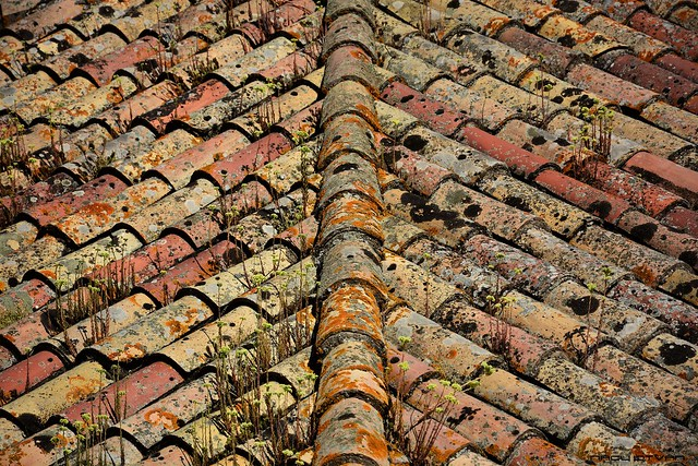 Abstract pattern of roof tiles