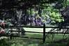 Sweet's parc