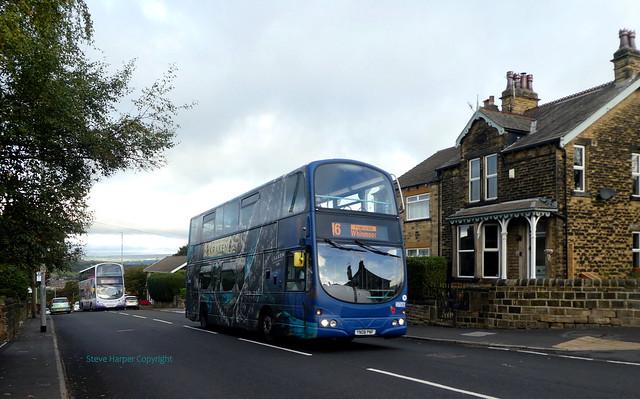 The Kraken in Blue-37506