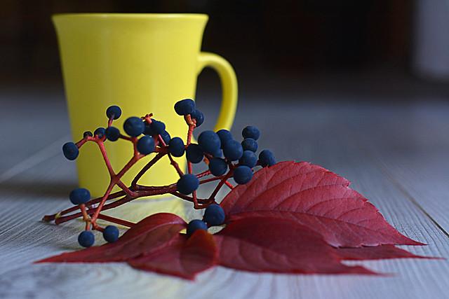 moments over tea