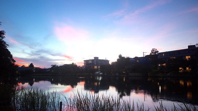 Shakujii Park at dusk