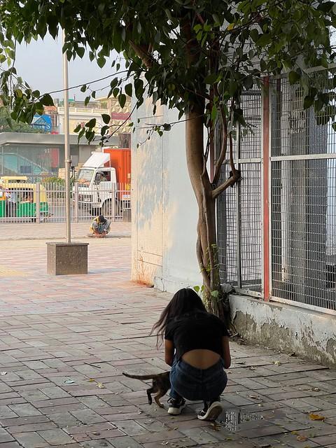 City Hangout - Chekhov's Promenade, South Extension 2