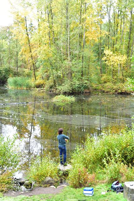 Rainbow trout, fisherman