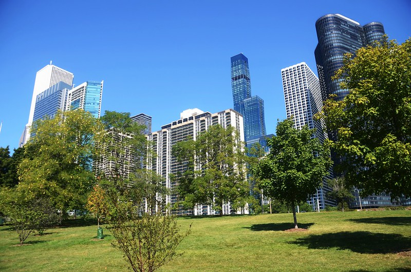 Chicago Skyline from Chicago Lakefront Trail (6)