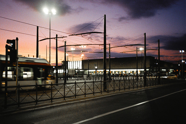 Vieni a vedere i pali a Firenze