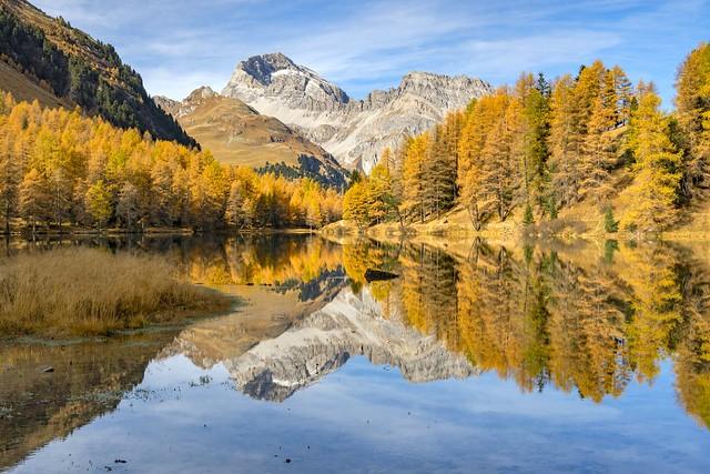 *Golden October morning on Lake Palpuogna*