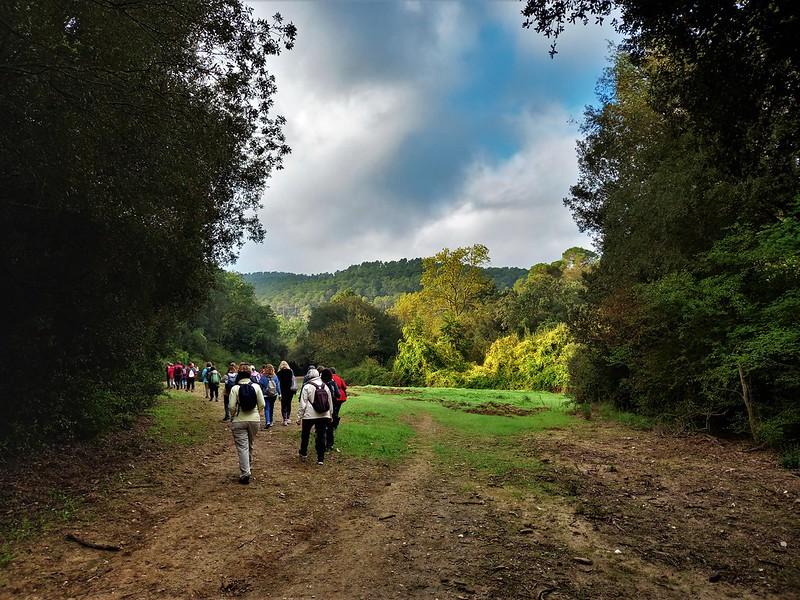 Natura als boscos de la Floresta (13/10/2021)