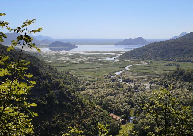 The river runs through the floating meadows to Lake Skadar