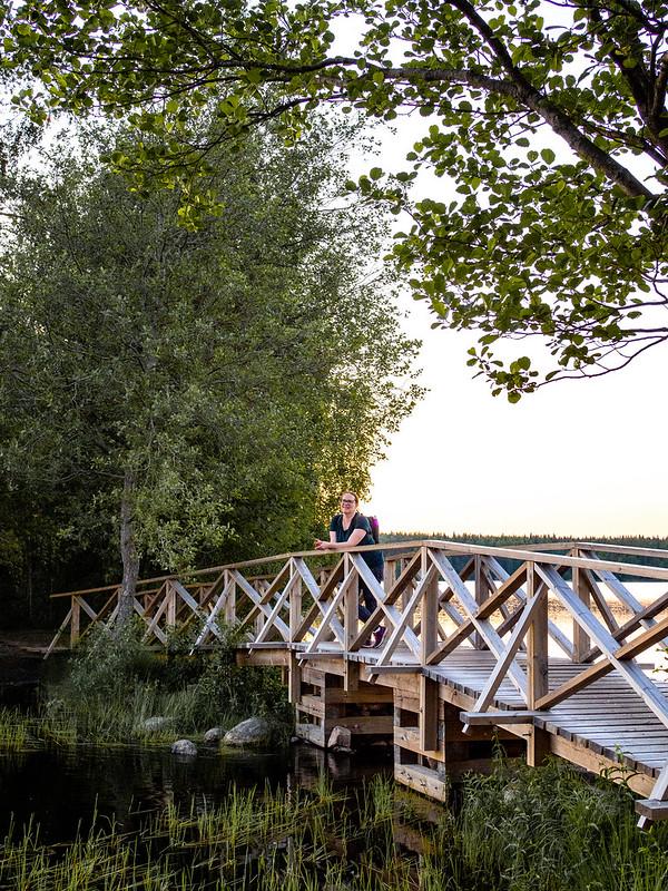 Kyynäränharju Liesjärvi