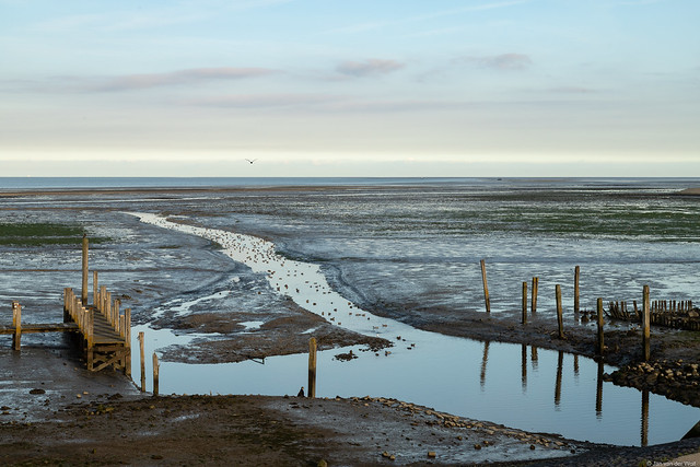 The small harbor of Sil at low tide, on the Wadden island of Texel.