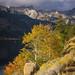Twin Lakes and Sawtooth Ridge